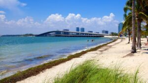 beaches in key biscayne